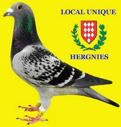 Local hergnies