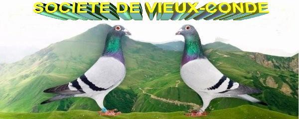 logo-1-pigeon.jpg
