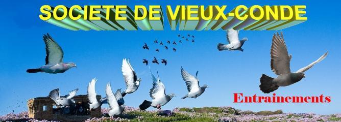 logo-pour-mon-site.jpg